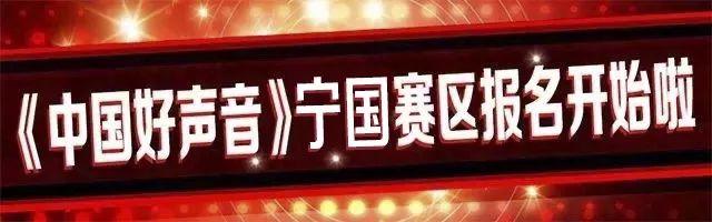 中国好声音全国海选宁国赛区海选报名火热进行中